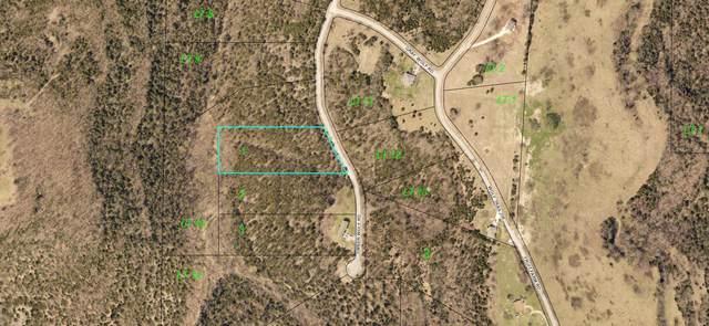 000 Timberwolf Road Lot 1, Hollister, MO 65672 (MLS #60182654) :: Evan's Group LLC