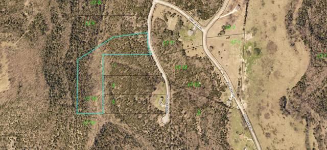 000 Timberwolf Road Lot 10, Hollister, MO 65672 (MLS #60182659) :: Evan's Group LLC