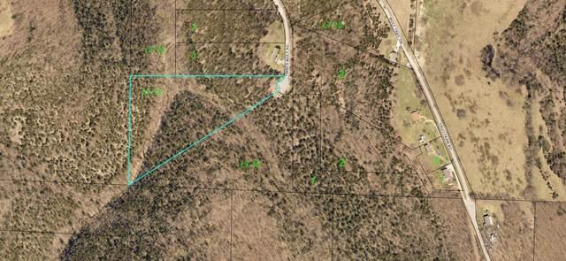 000 Timberwolf Road Lot 14, Hollister, MO 65672 (MLS #60182661) :: Evan's Group LLC
