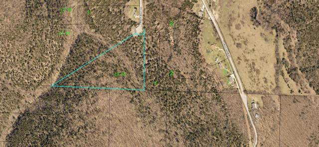 000 Timberwolf Road Lot 15, Hollister, MO 65672 (MLS #60182662) :: Evan's Group LLC