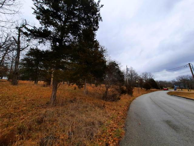 000 Green Briar Drive, Branson, MO 65616 (MLS #60182890) :: Team Real Estate - Springfield