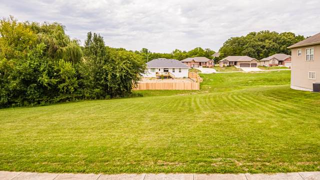 1081 E Daisy Falls Drive, Nixa, MO 65714 (MLS #60182911) :: Clay & Clay Real Estate Team