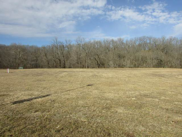 11-A Cortney Lane, Crane, MO 65633 (MLS #60183003) :: The Real Estate Riders