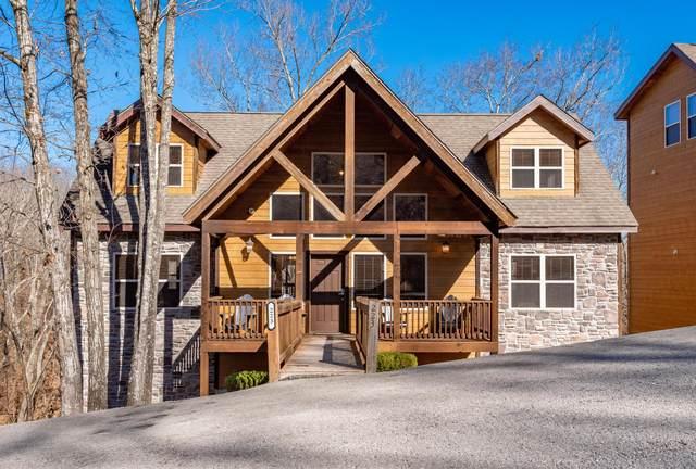 223 Willow Oak Lane, Indian Point, MO 65616 (MLS #60183081) :: Sue Carter Real Estate Group