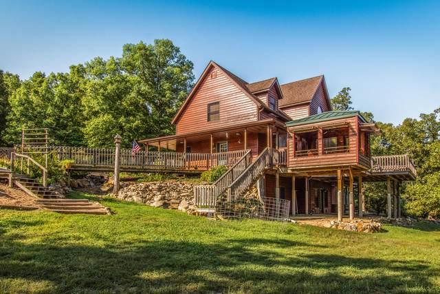 179 Nelson Lane, Theodosia, MO 65761 (MLS #60183209) :: Clay & Clay Real Estate Team