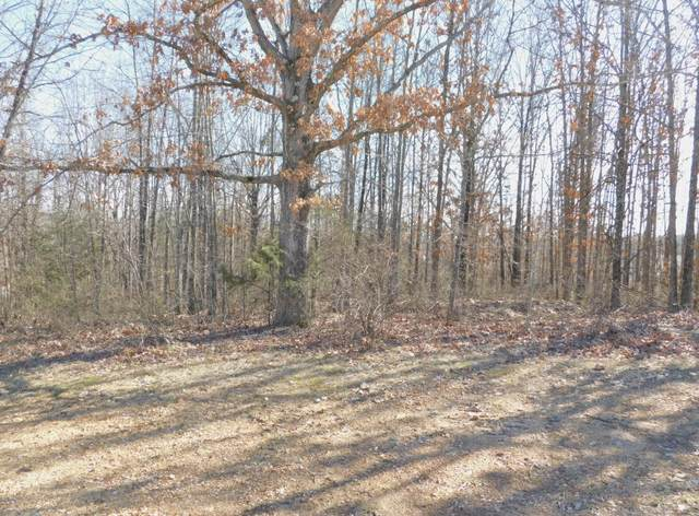 Tbd Big Deer Run Lot #9, West Plains, MO 65775 (MLS #60183339) :: Tucker Real Estate Group | EXP Realty