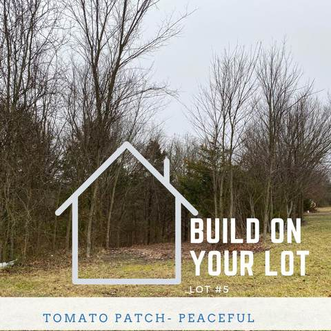 000 Tomato Patch Lot #5, Lampe, MO 65681 (MLS #60183491) :: The Real Estate Riders