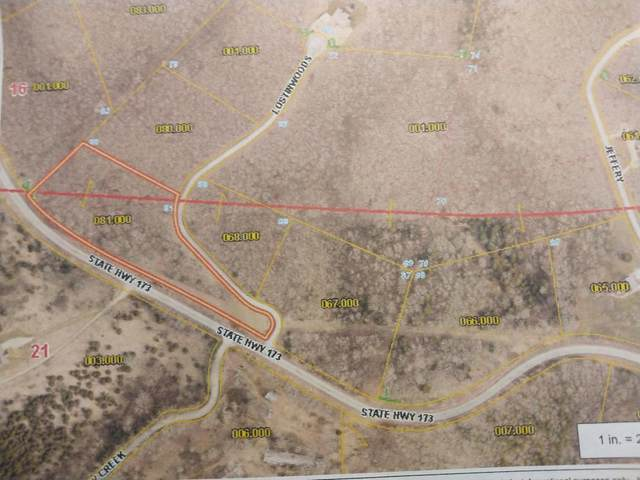 000 Mo Hwy 173 (4.23 Acres) Lot 81, Cape Fair, MO 65624 (MLS #60183519) :: Clay & Clay Real Estate Team