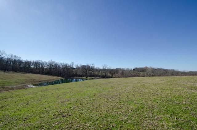 000 154 Ac Springer Farm Hwy 413, Crane, MO 65633 (MLS #60183559) :: Team Real Estate - Springfield
