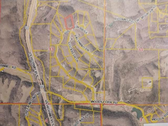000 Buckskin Ridge (5.04 Acres) (Lot 35), Highlandville, MO 65669 (MLS #60183687) :: Team Real Estate - Springfield