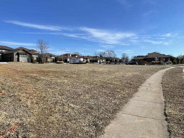 6107 S Piazza Avenue, Ozark, MO 65721 (MLS #60183822) :: Team Real Estate - Springfield