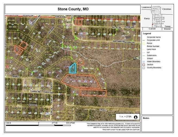 11-13 Cayuga, Shell Knob, MO 65747 (MLS #60183922) :: Team Real Estate - Springfield