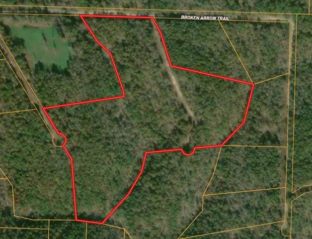 000 Golden, Raymondville, MO 65555 (MLS #60183930) :: The Real Estate Riders