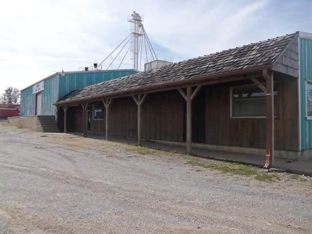 29 N Elliott Highway 39 Avenue, Aurora, MO 65605 (MLS #60184005) :: The Real Estate Riders