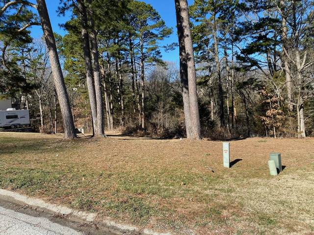 145 Nathan Drive Lot 23, Hollister, MO 65672 (MLS #60184013) :: Sue Carter Real Estate Group