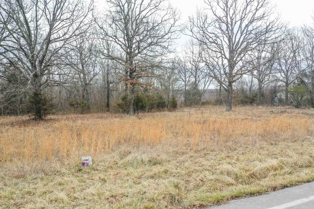 10062 N Farm Road 163, Pleasant Hope, MO 65725 (MLS #60184039) :: The Real Estate Riders