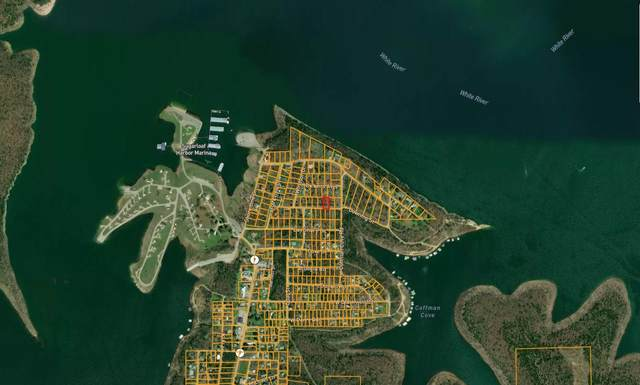 10 Downing Street, Diamond City, AR 72644 (MLS #60184097) :: The Real Estate Riders