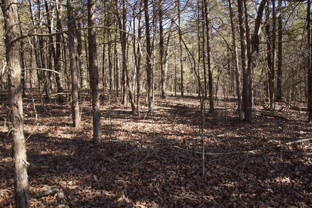 000 Lacey Marie Trail, Shell Knob, MO 65747 (MLS #60184198) :: Sue Carter Real Estate Group