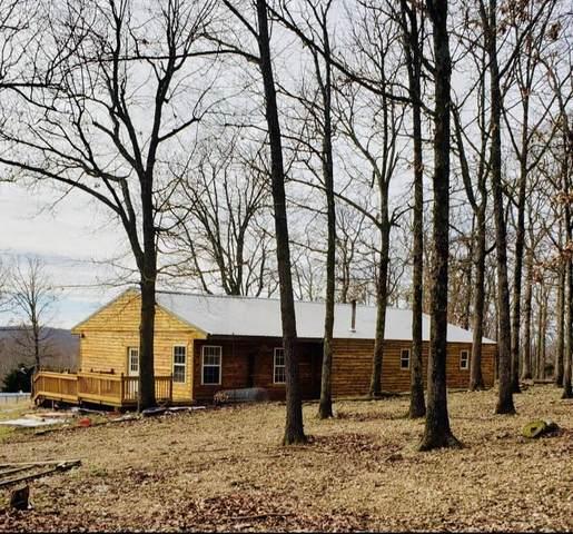 53 Ponderosa Trail, Long Lane, MO 65590 (MLS #60184288) :: United Country Real Estate