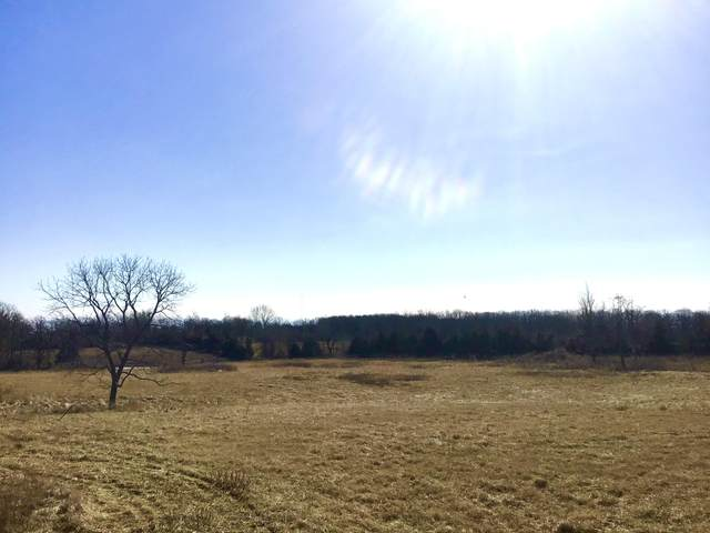 000 Top Road, Mountain Grove, MO 65711 (MLS #60184289) :: United Country Real Estate