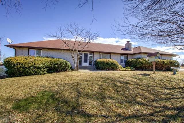225 Blue Sky Drive, Ozark, MO 65721 (MLS #60184392) :: Sue Carter Real Estate Group