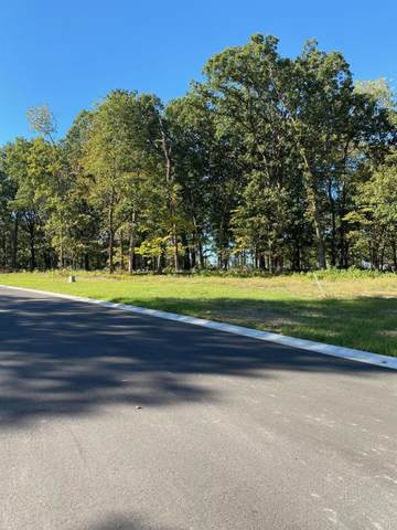 Lot 6 The Estates Of Enniskerry, Nixa, MO 65714 (MLS #60184545) :: The Real Estate Riders