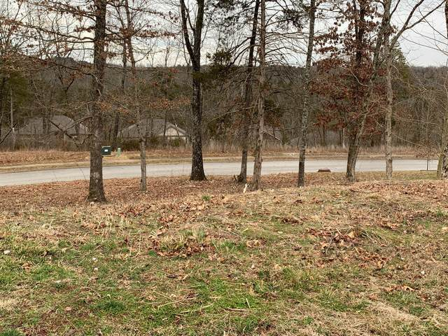 186 Country Ridge Way, Branson, MO 65616 (MLS #60184570) :: Clay & Clay Real Estate Team