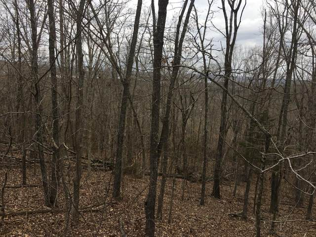 Lot 17 Blue Water Village On Dd Hwy, Branson West, MO 65737 (MLS #60184899) :: Tucker Real Estate Group | EXP Realty