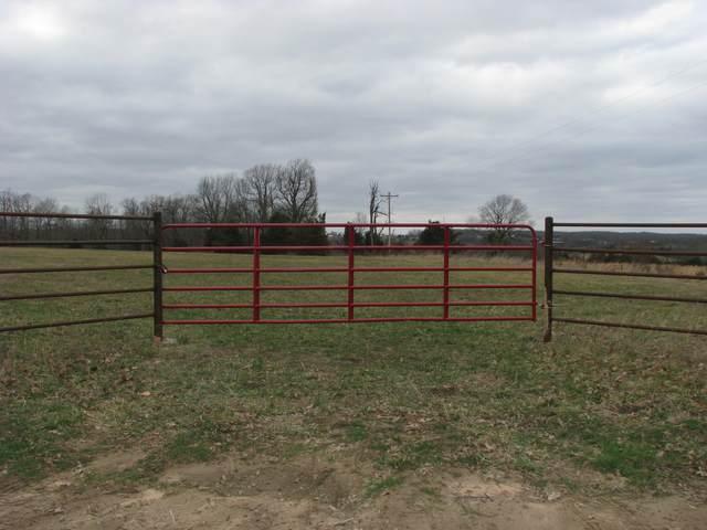 000 Vermule Road, Billings, MO 65610 (MLS #60184943) :: Team Real Estate - Springfield
