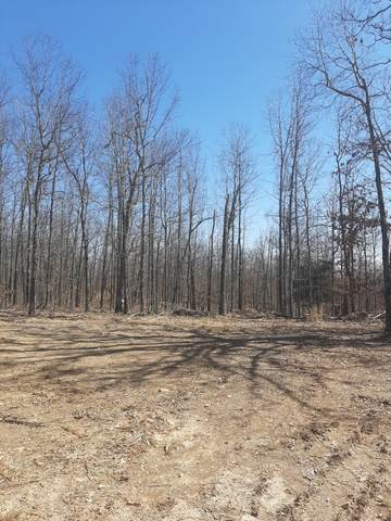 000 County Road 204 (Off), Alton, MO 65606 (MLS #60185013) :: United Country Real Estate