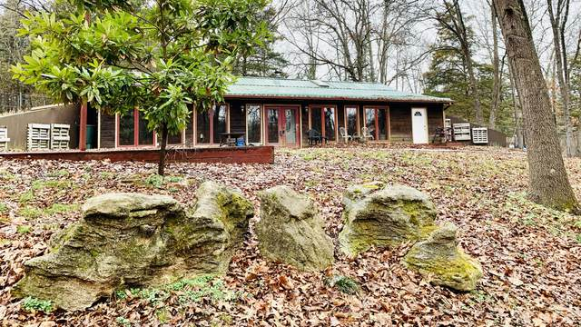 1672 Meadow View Road, Ozark, MO 65721 (MLS #60185131) :: The Real Estate Riders