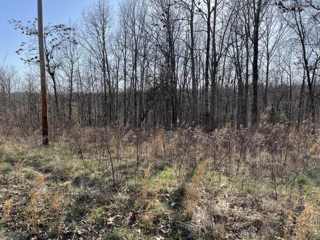 000 Private Road Aa-84, Alton, MO 65606 (MLS #60185732) :: United Country Real Estate