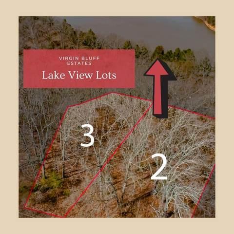 000 Lot #2-Judy Lane Drive, Galena, MO 65656 (MLS #60185739) :: Tucker Real Estate Group | EXP Realty