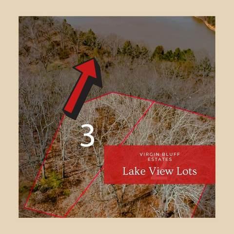 000 Lot #3-Judy Lane Drive, Galena, MO 65656 (MLS #60185741) :: Tucker Real Estate Group | EXP Realty