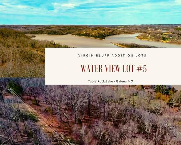 000 Lot #5-Judy Lane Drive, Galena, MO 65656 (MLS #60185742) :: Tucker Real Estate Group | EXP Realty
