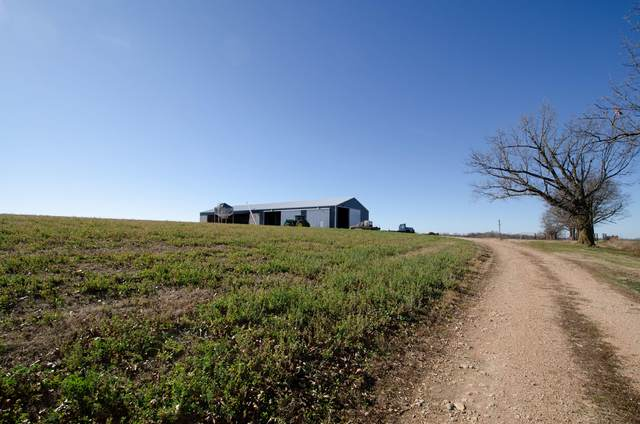 000 Hwy 413 Springer Farm Tract C, Crane, MO 65633 (MLS #60185856) :: Team Real Estate - Springfield