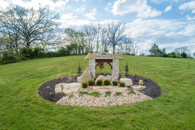 Lot #4 Lone Star Drive, Nixa, MO 65714 (MLS #60186019) :: Evan's Group LLC