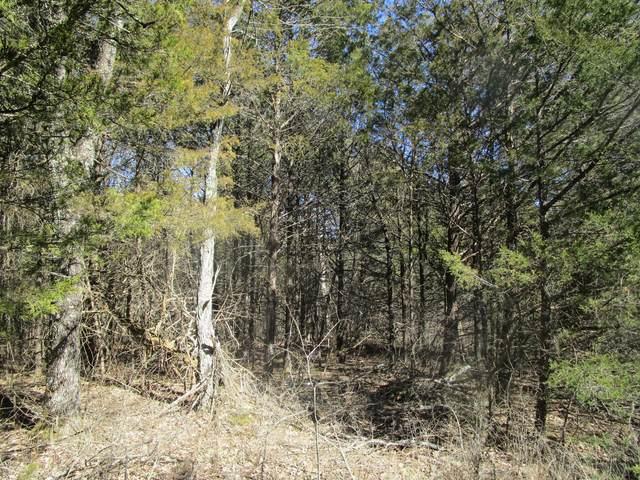 000 Stoneridge, Shell Knob, MO 65747 (MLS #60186046) :: Tucker Real Estate Group | EXP Realty
