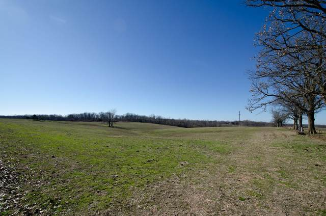 000 Highway 413 Dean Place Tract B, Crane, MO 65633 (MLS #60186049) :: Team Real Estate - Springfield