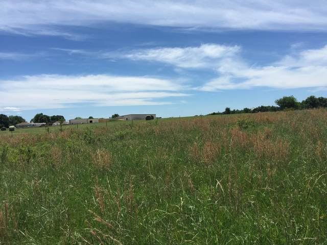 00 S State Highway Nn, Ozark, MO 65721 (MLS #60186207) :: The Real Estate Riders