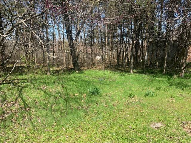910 Silverbluff Circle, Branson West, MO 65737 (MLS #60186405) :: Winans - Lee Team   Keller Williams Tri-Lakes