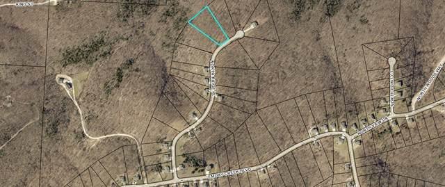 385 N Ridge Place Lot 117, Branson, MO 65616 (MLS #60186551) :: Lakeland Realty, Inc.