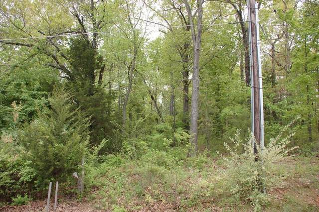 Lot 1 Thayer Avenue, West Plains, MO 65775 (MLS #60186570) :: United Country Real Estate