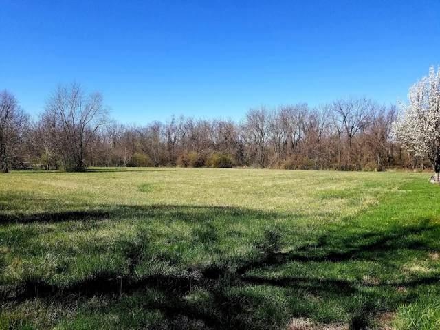 1139 N Dickerson Avenue, Springfield, MO 65803 (MLS #60186672) :: Team Real Estate - Springfield