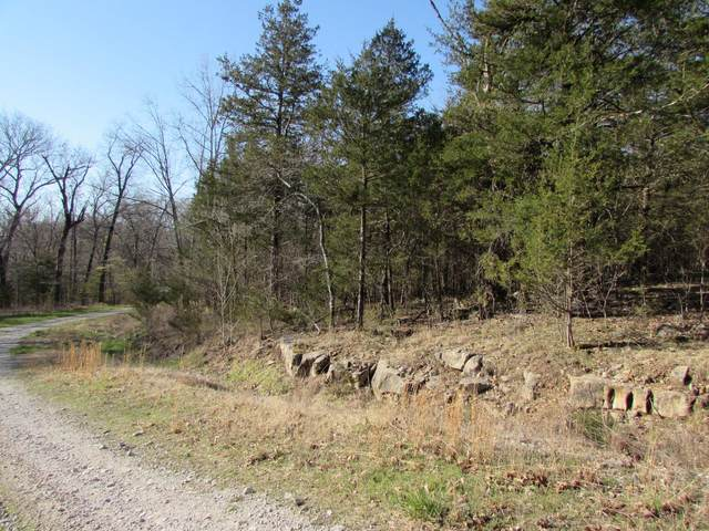 000 Lot 20 Rocky Point Loop, Branson, MO 65616 (MLS #60186828) :: Winans - Lee Team | Keller Williams Tri-Lakes