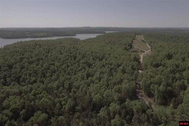 000 Eagle Ridge Rd (Interior Only) Lot 20, Protem, MO 65733 (MLS #60186926) :: Tucker Real Estate Group | EXP Realty