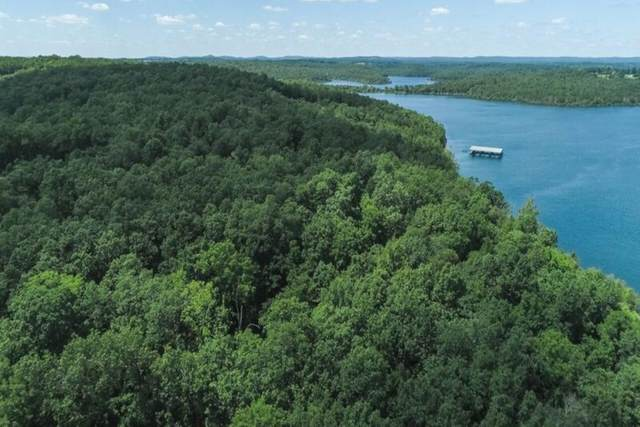 000 Eagle Ridge Rd (Lakeview Lots), Protem, MO 65733 (MLS #60186937) :: Tucker Real Estate Group | EXP Realty