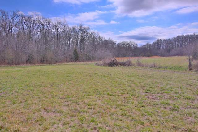 000 Private Road 63-91, Thayer, MO 65791 (MLS #60186988) :: United Country Real Estate