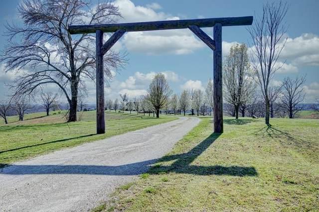 2024 Dogwood Tree Road, Reeds Spring, MO 65737 (MLS #60187388) :: Winans - Lee Team | Keller Williams Tri-Lakes