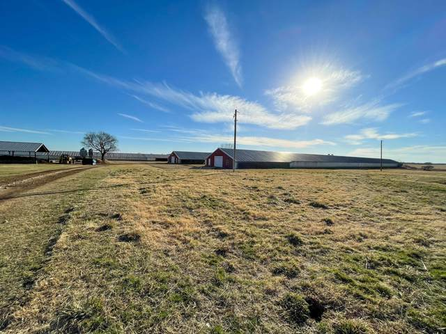 23697 W Hwy 12, Gentry, AR 72734 (MLS #60187420) :: Tucker Real Estate Group | EXP Realty